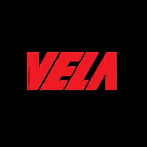 VELA_logo_2